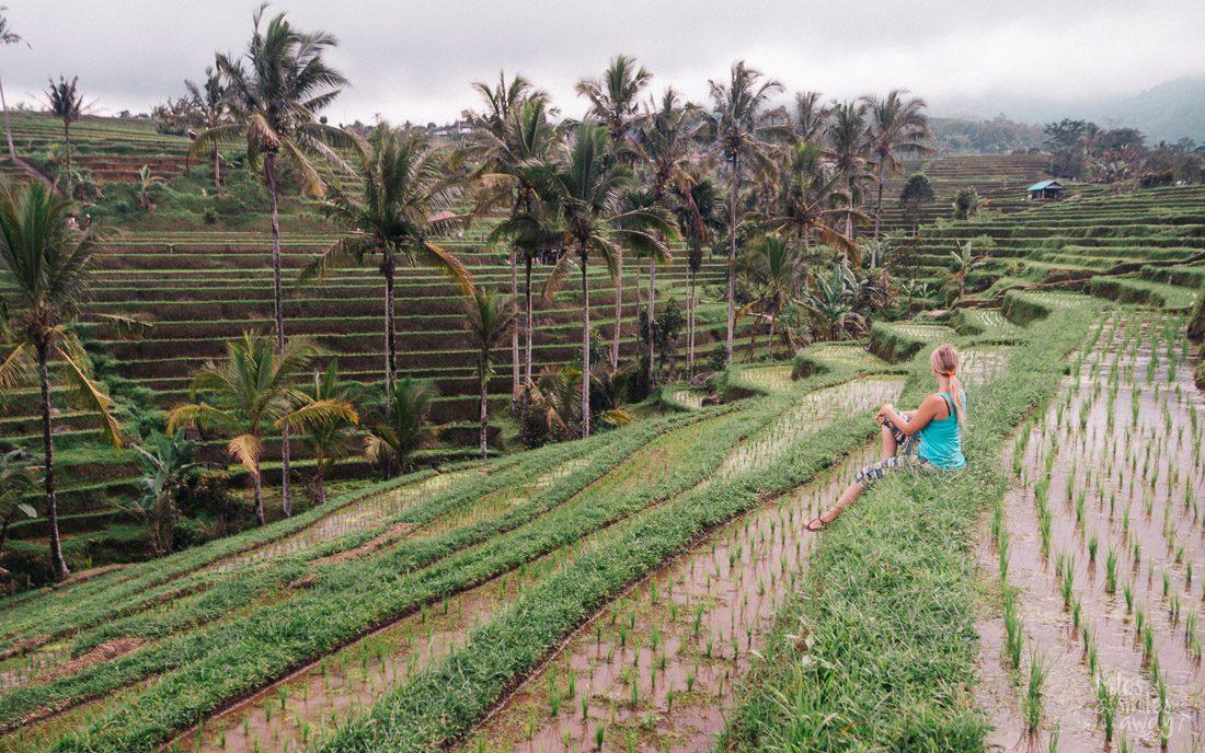Jutiluwih rice terrace Bali