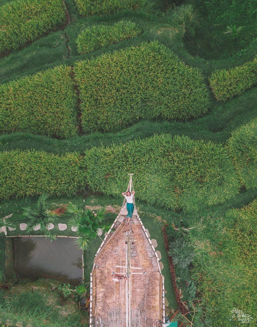 Rice paddies Bali Gunung Kawi